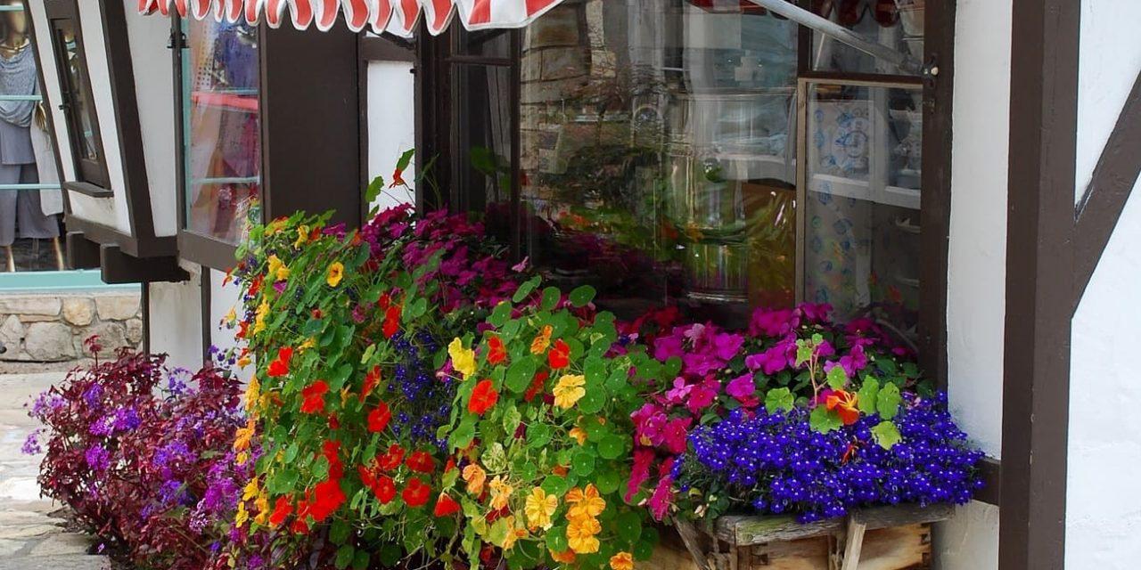 Jak wybrać najlepszą markizę na balkon i taras?